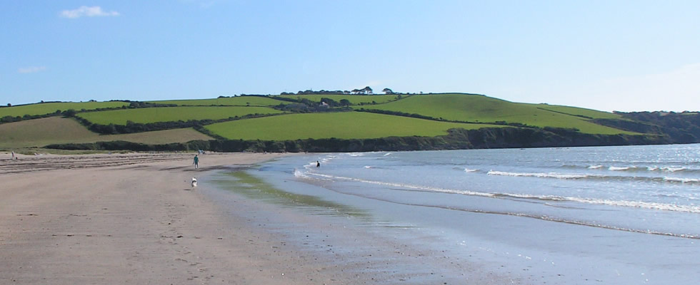 The large sandy beach at Par near St Austell - a great place to walk the dog!
