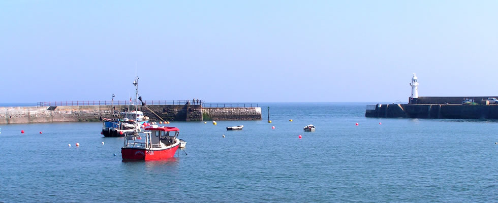 Views over the harbour entrance at Mevagissey